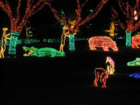 Zoo String Lights : Christmas Conversations and Some Zoo Lights - National Animal Interest Alliance