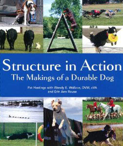 StructureInAction